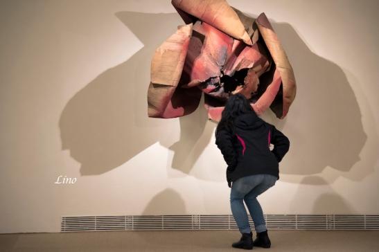 Sartore Guggenheim 104