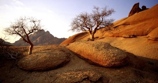 Tomiello Namibia 234.jpg