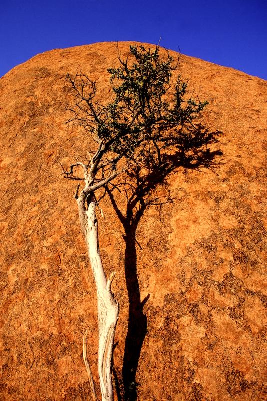 Tomiello Namibia 250 .jpg