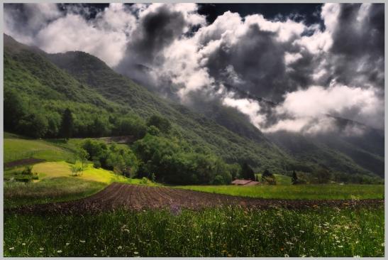 Bicego 011 nuvole.jpg