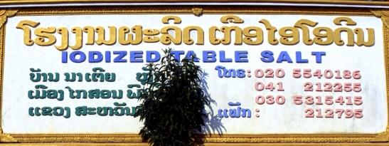 Laos saline 303.jpg