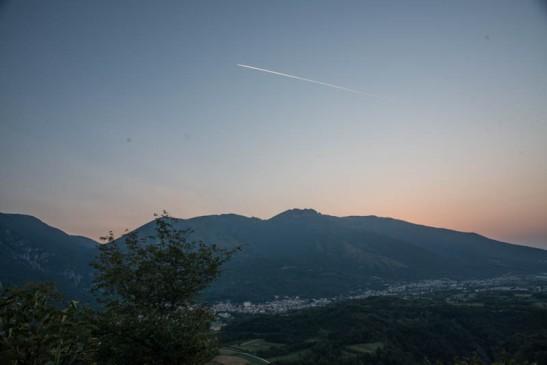 Priante alba-5068.jpg