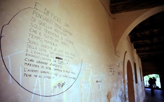 Tomiello 010 -Morro d'Alba(Marche).jpg