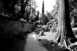Priante parco Rossi E image1487