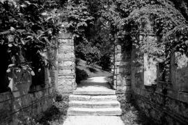 Priante parco Rossi F image1498