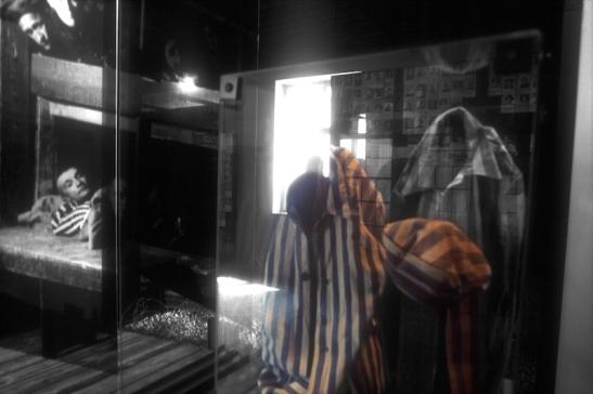 Tomiello Auschwitz a004.jpg
