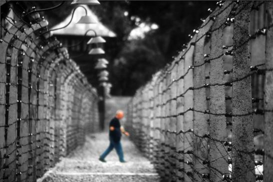 Tomiello Auschwitz a026.jpg
