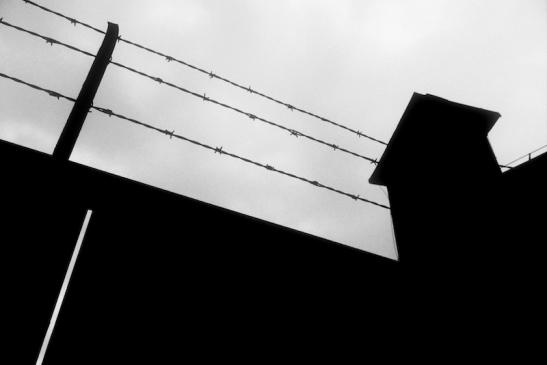 Tomiello Auschwitz a029.jpg