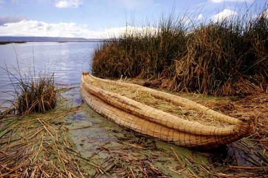 Tomiello Lago Titicaca211.jpg