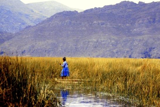 Tomiello Lago Titicaca218.jpg