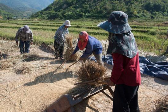 Priante_Birmania-1029.jpg