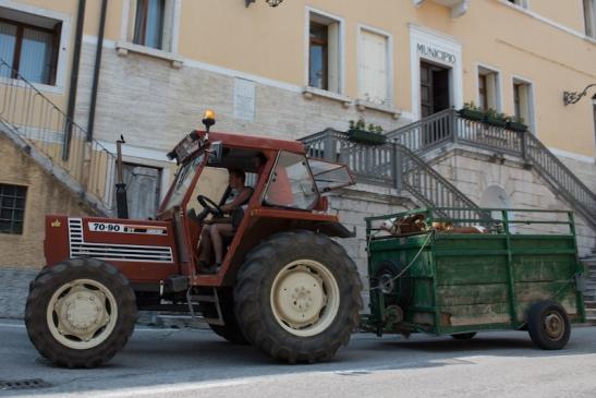 Priante Allevatore 50 DSC_6467.jpg