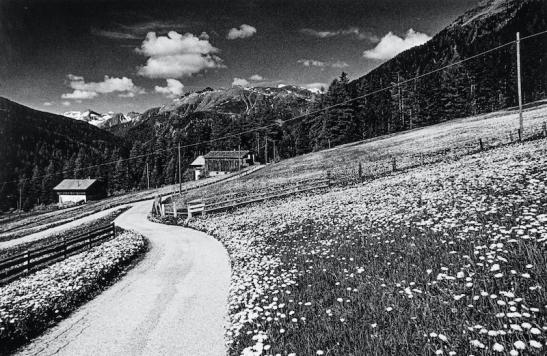 Campagna Val Badia 01 (12).jpg