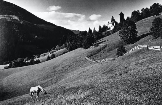 Campagna Val Badia 01 (15).jpg