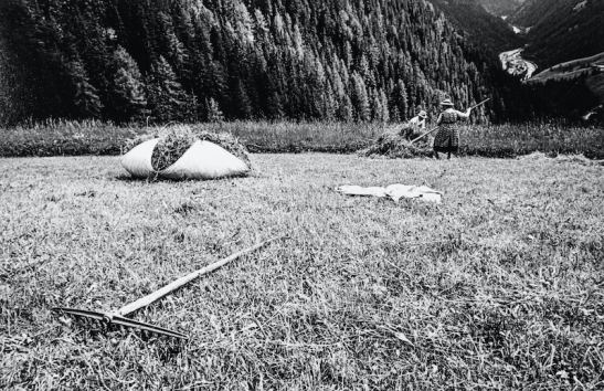 Campagna Val Badia 01 (3).jpg