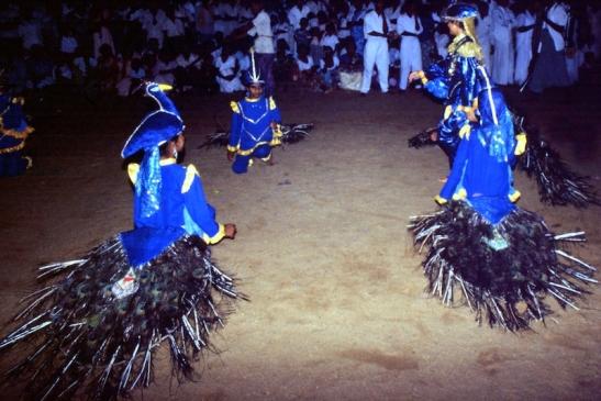 Tomiello SriLanka_006