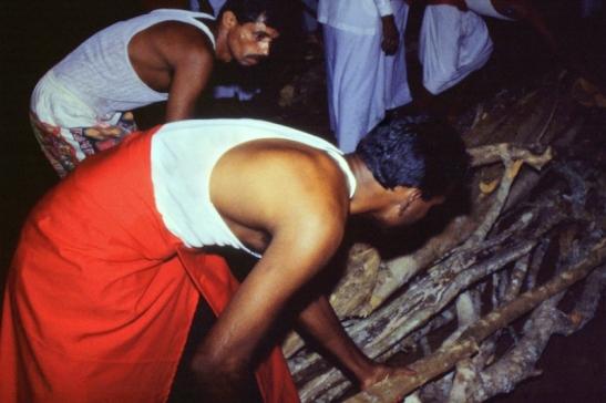 Tomiello SriLanka_016