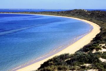 Tomiello Australia_019