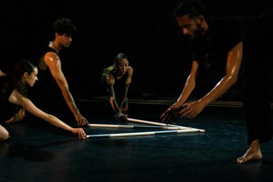 """Spettacolo di danza """"Naturalis labor"""" palazzo Toaldi Capra"""